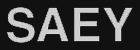 Saey-logo-3